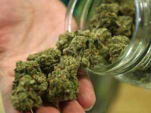 marijuana-dbc04668ba596d1d11bbfdcab899d5bdcf6b293a-s40-c85