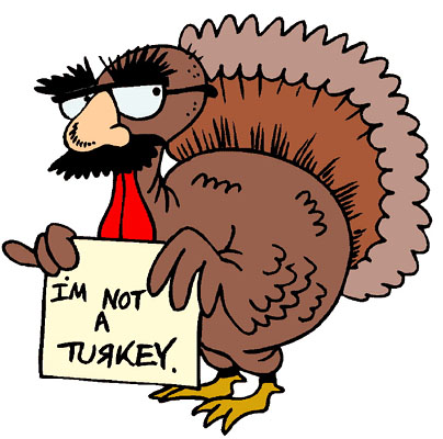 This image has an empty alt attribute; its file name is turkey2.jpg