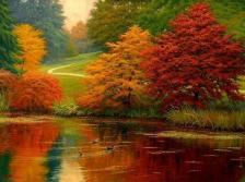 autumn-pond